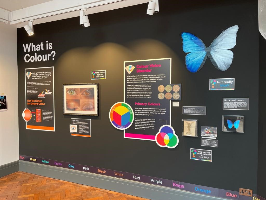 """Bolton Library & Museum Services' """"World of Colours"""" exhibition"""